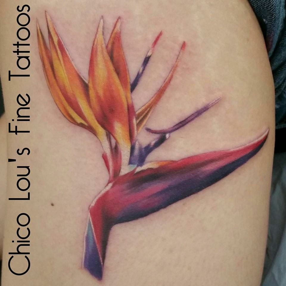 Bird of paradise flower by Chico Lou's Fine Tattoos in Athens Georgia GA