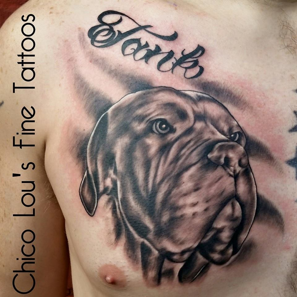 Tank the mastiff tribute by Chico Lou's Fine Tattoos in Athens Georgia GA