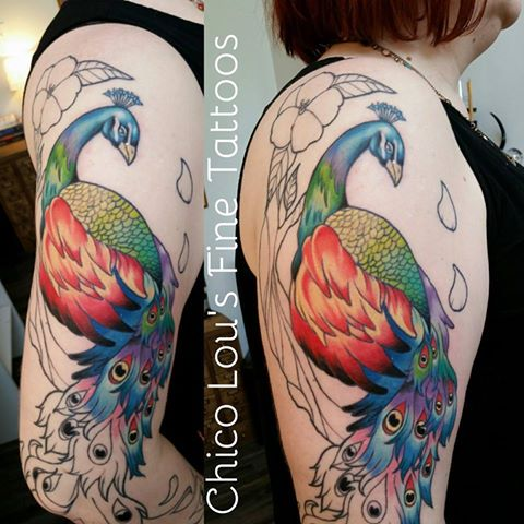Peacock color progress by Chico Lou's Fine Tattoos shop in Athens Georgia GA. Artist - Sara Fogle