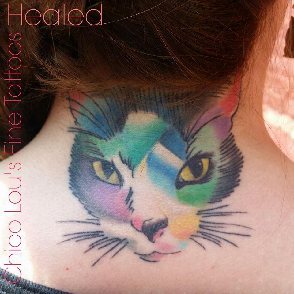 Healed artistic kitty by Chico Lou's Fine Tattoos shop in Athens Georgia GA. Artist - Sara Fogle