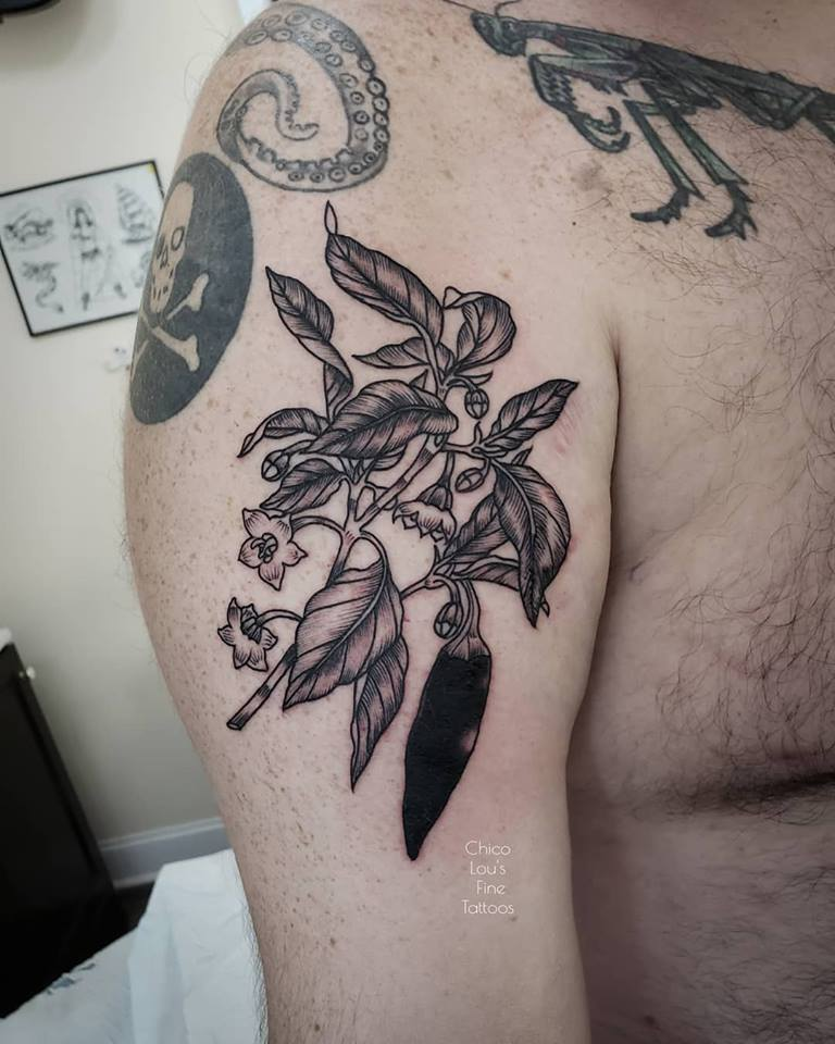 Pepper plant by Chico Lou's Fine Tattoos shop in Athens Georgia GA. Artist - Sara Fogle