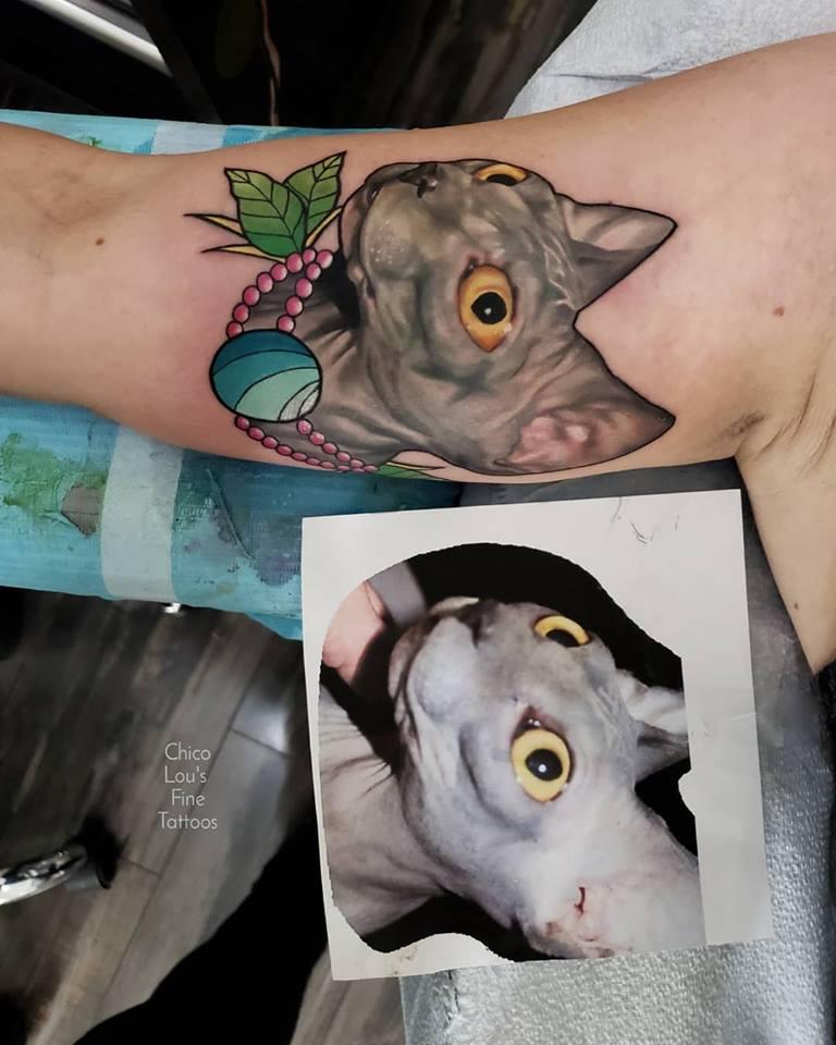 Sphynx cat by Chico Lou's Fine Tattoos shop in Athens Georgia GA. Artist - Sara Fogle