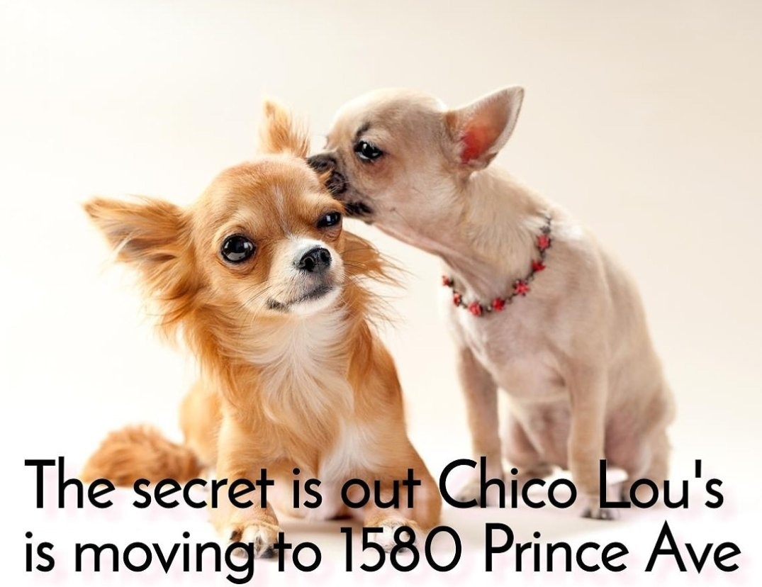 Chico Lou's Fine Tattoos is moving to 1580 Prince Avenue in Athens Georgia GA