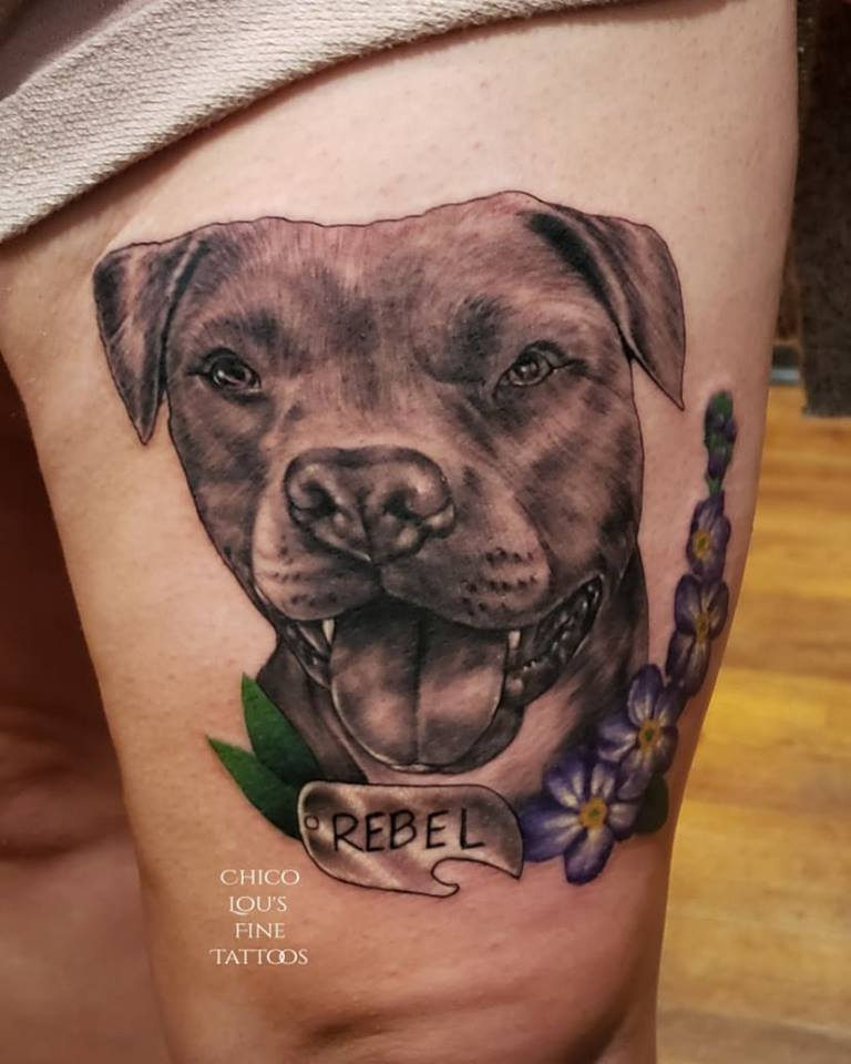 Rebel the pitbull by Chico Lou's Fine Tattoos shop in Athens Georgia GA. Artist - Sara Fogle