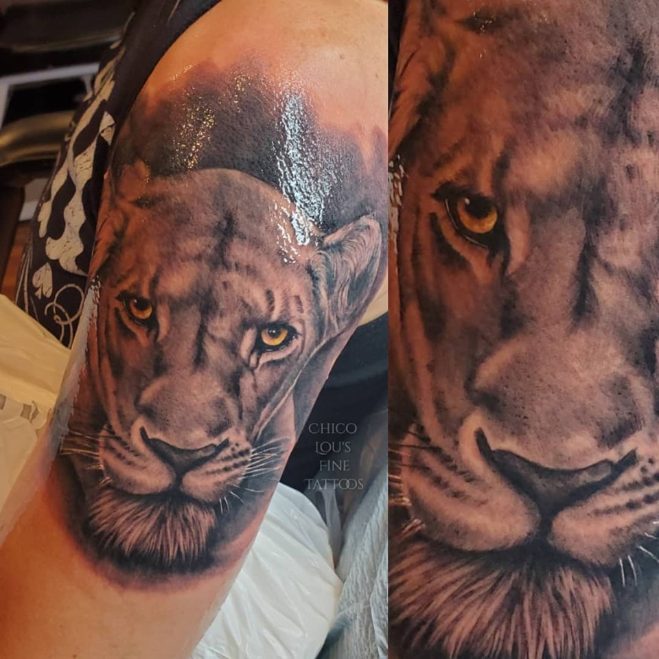 Lioness by Chico lou's Fine Tattoos shop in Athens Georgia GA. Artist - Sara Fogle