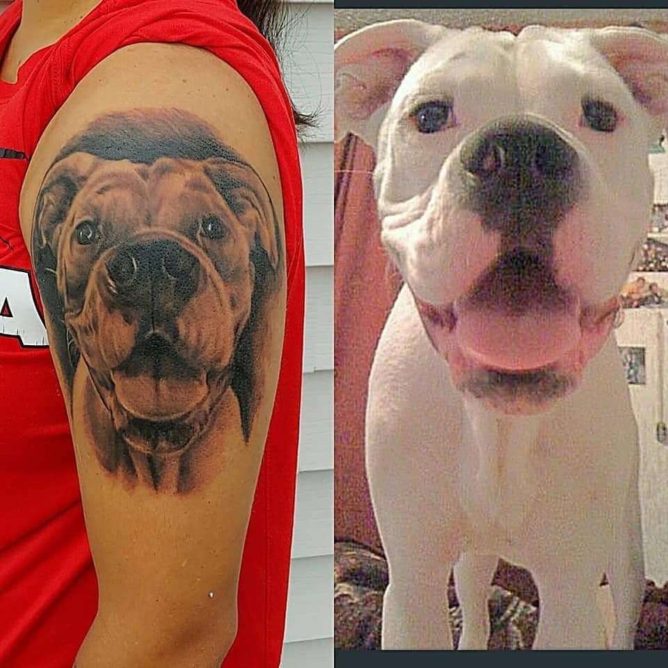Dog portrait by Chico Lou's Fine Tattoos studio in Athens Georgia GA. Artist - Veronica Hahn