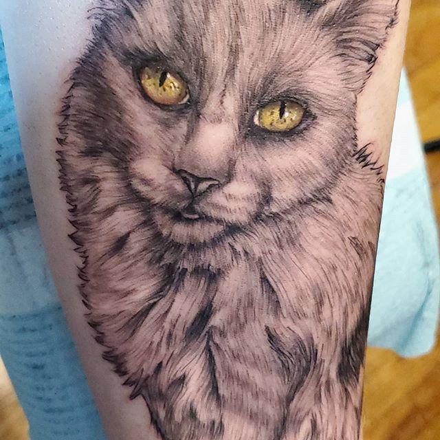 Cat portrait by Chico Lou's Fine Tattoos studio in Athens georgia GA. Artist - Sara Fogle