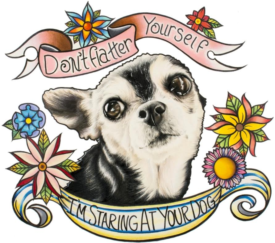 Don't Flatter Yourself by Sara M Fogle