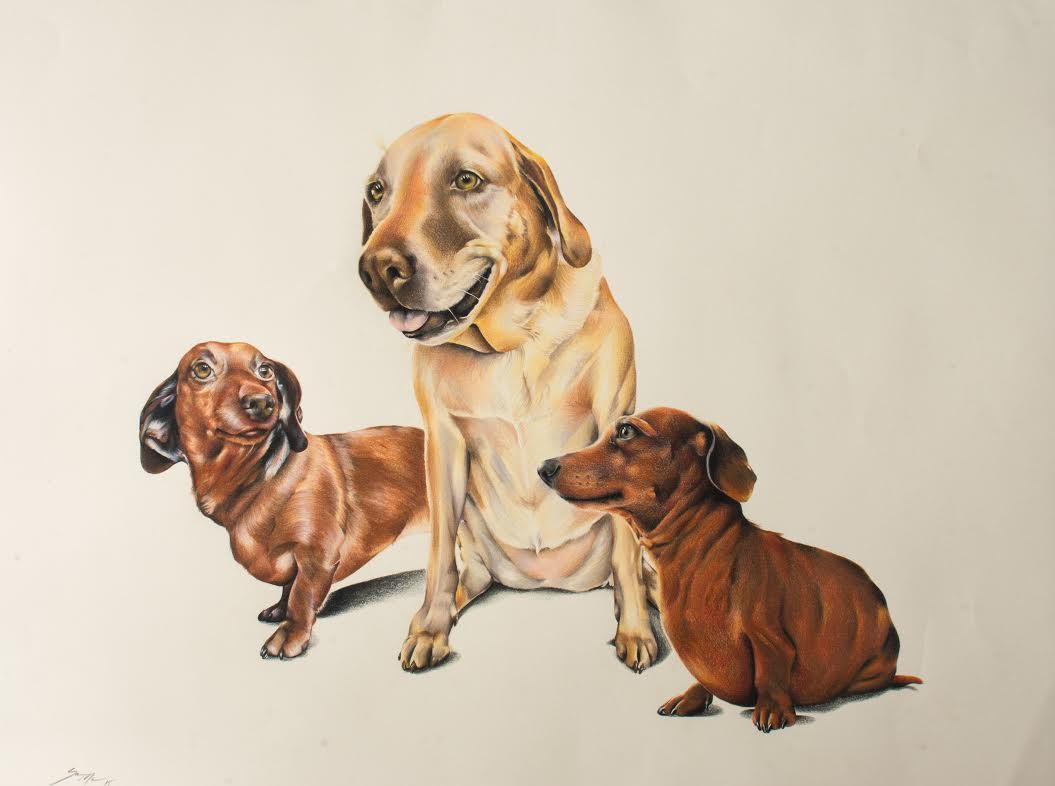 Family by Sara M Fogle