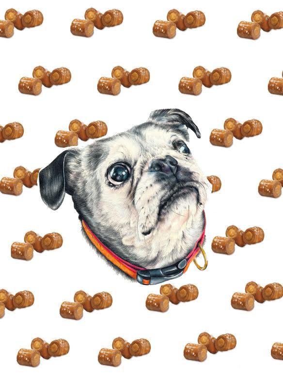 Snacks by Sara M Fogle